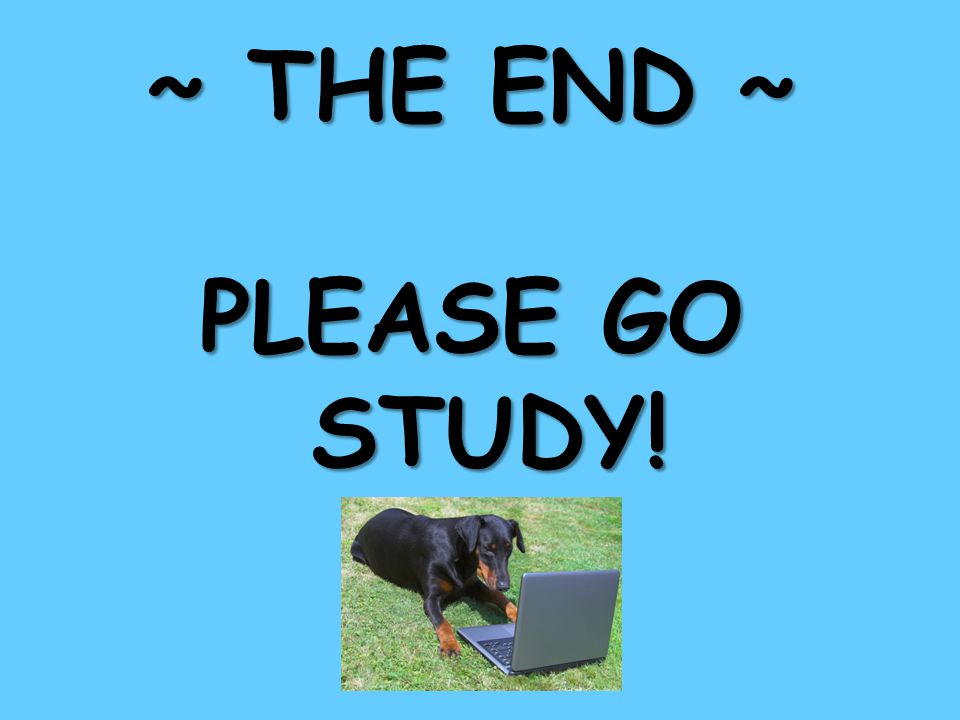 ~ THE END ~ PLEASE GO STUDY!