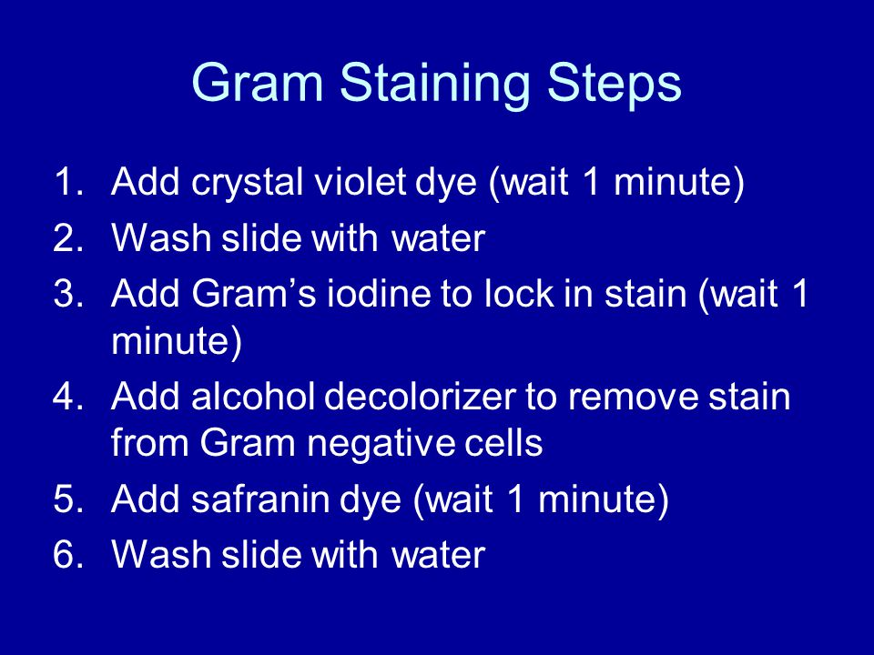 Gram Staining Steps Add crystal violet dye (wait 1 minute)