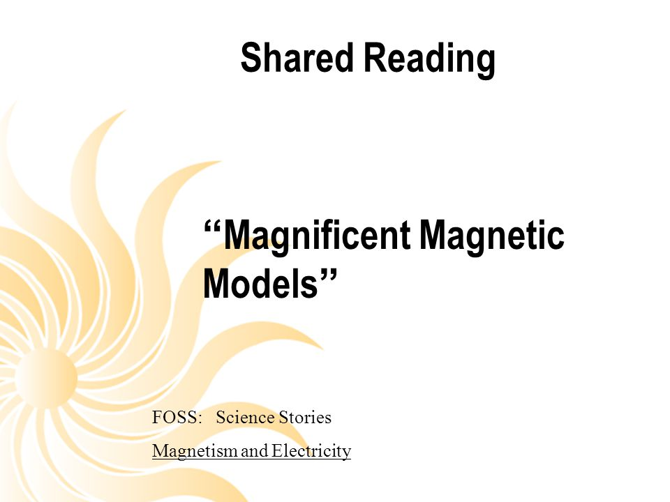 Magnificent Magnetic Models