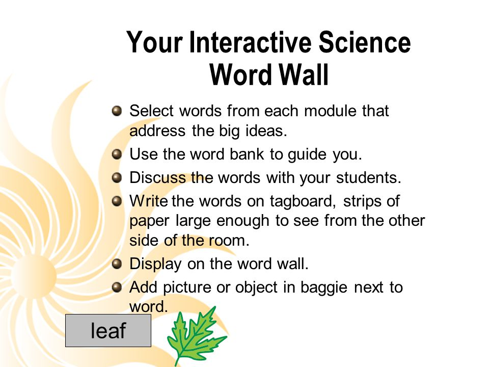 Your Interactive Science Word Wall