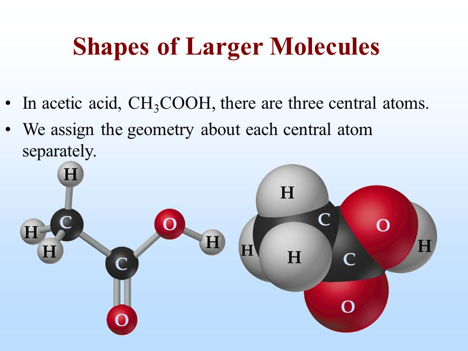 Shapes of Larger Molecules