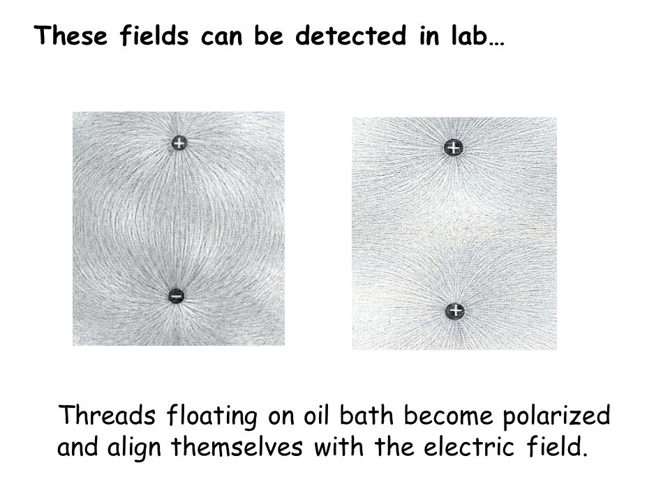 These fields can be detected in lab…