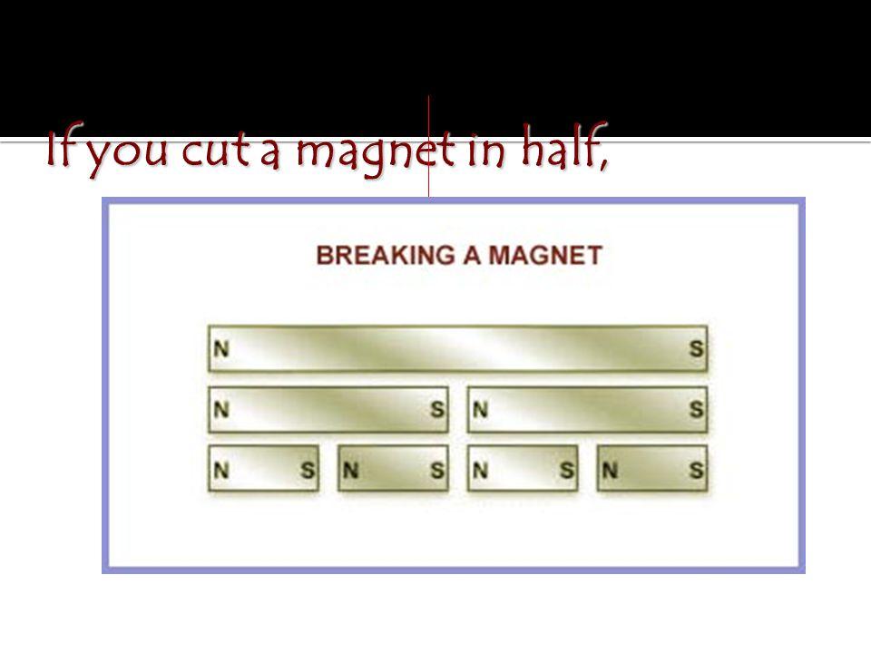If you cut a magnet in half,