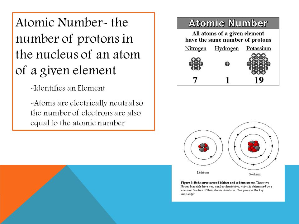 Atomic Number- the number of protons in the nucleus of an atom of a given element