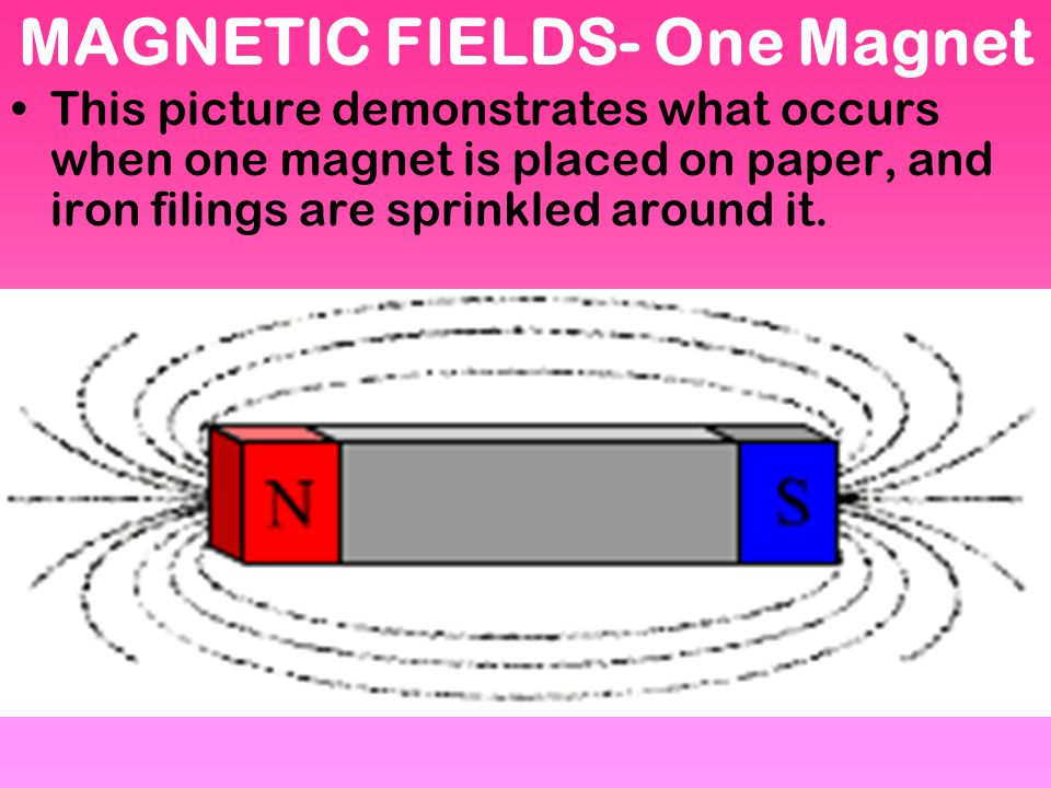 MAGNETIC FIELDS- One Magnet