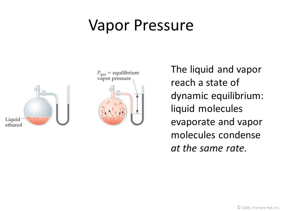 Vapor Pressure The liquid and vapor reach a state of dynamic equilibrium: liquid molecules evaporate and vapor molecules condense at the same rate.