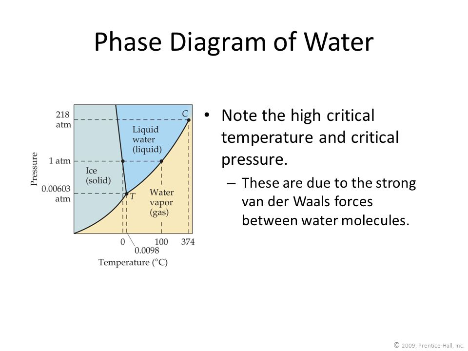 Phase Diagram of Water Note the high critical temperature and critical pressure.