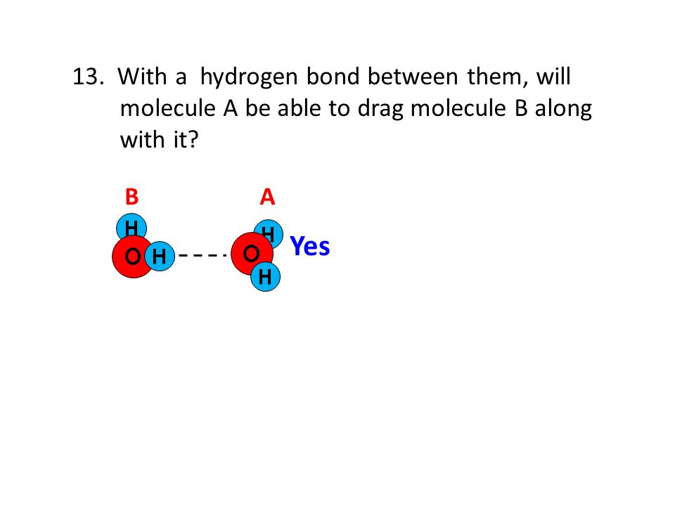 Yes 13. With a hydrogen bond between them, will