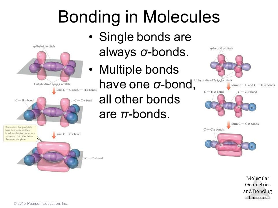 Bonding in Molecules Single bonds are always σ-bonds.