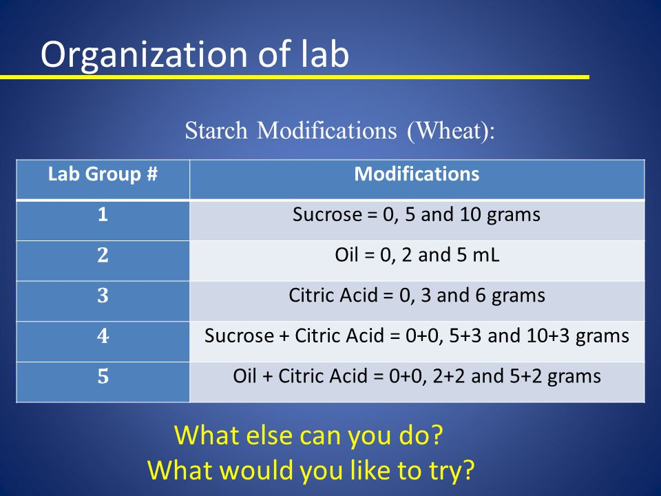 Organization of lab What else can you do What would you like to try