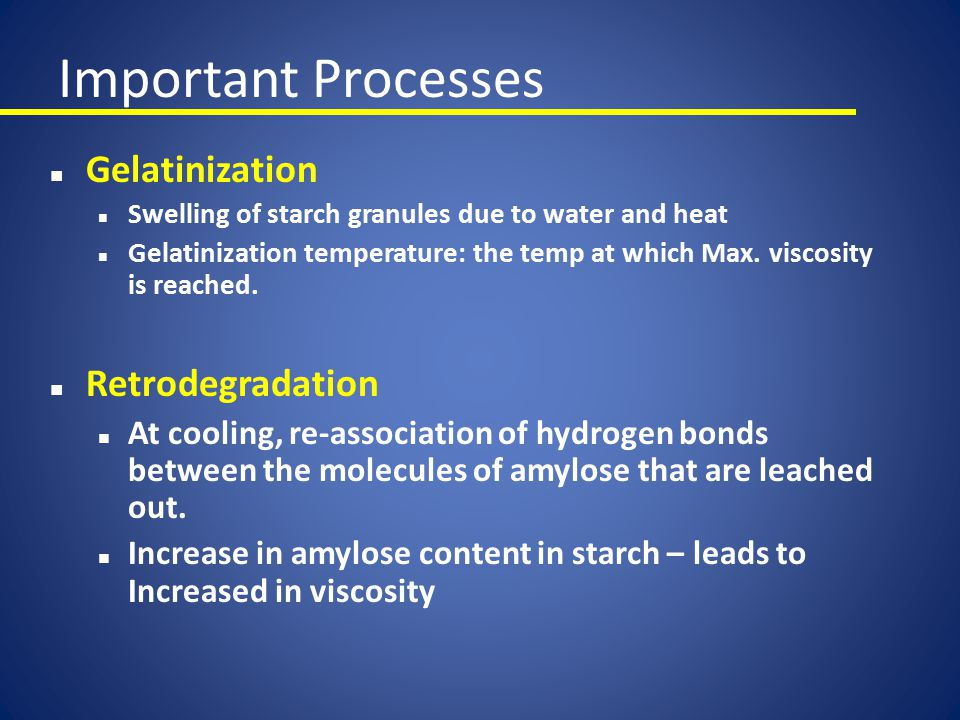 Important Processes Gelatinization Retrodegradation