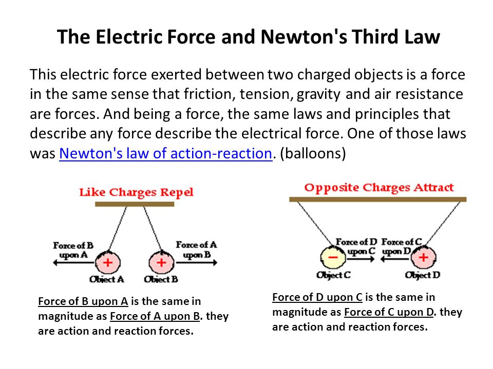 The Electric Force and Newton s Third Law