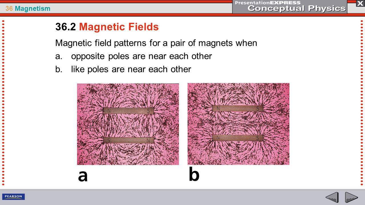 36.2 Magnetic Fields Magnetic field patterns for a pair of magnets when. opposite poles are near each other.