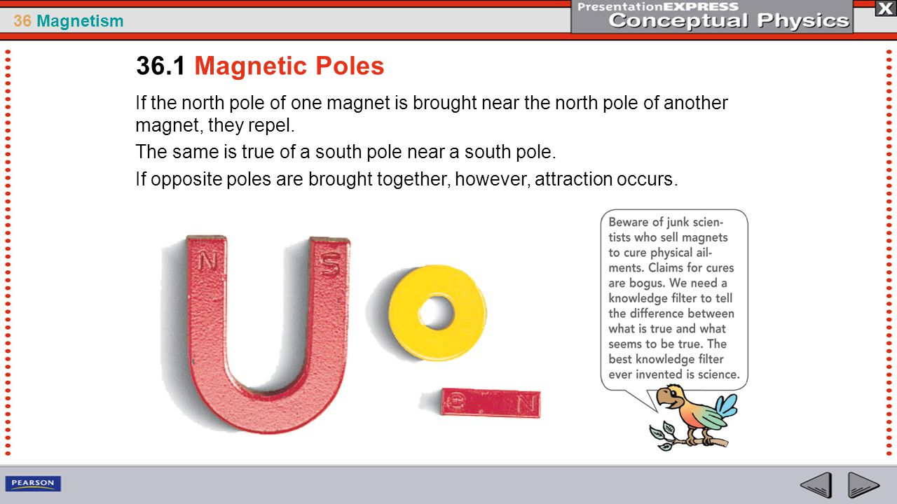 36.1 Magnetic Poles If the north pole of one magnet is brought near the north pole of another magnet, they repel.