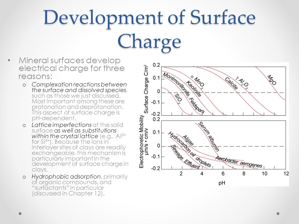 Development of Surface Charge