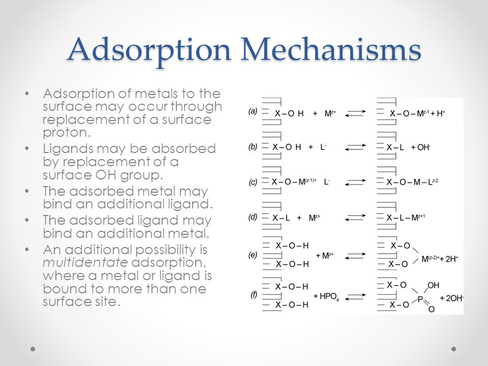 Adsorption Mechanisms