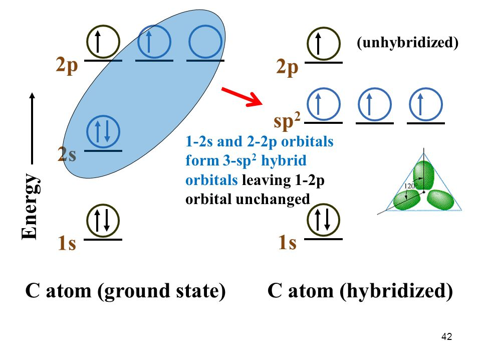 2p 2p sp2 2s Energy 1s 1s C atom (ground state) C atom (hybridized)