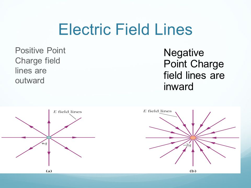 Electric Field Lines Negative Point Charge field lines are inward