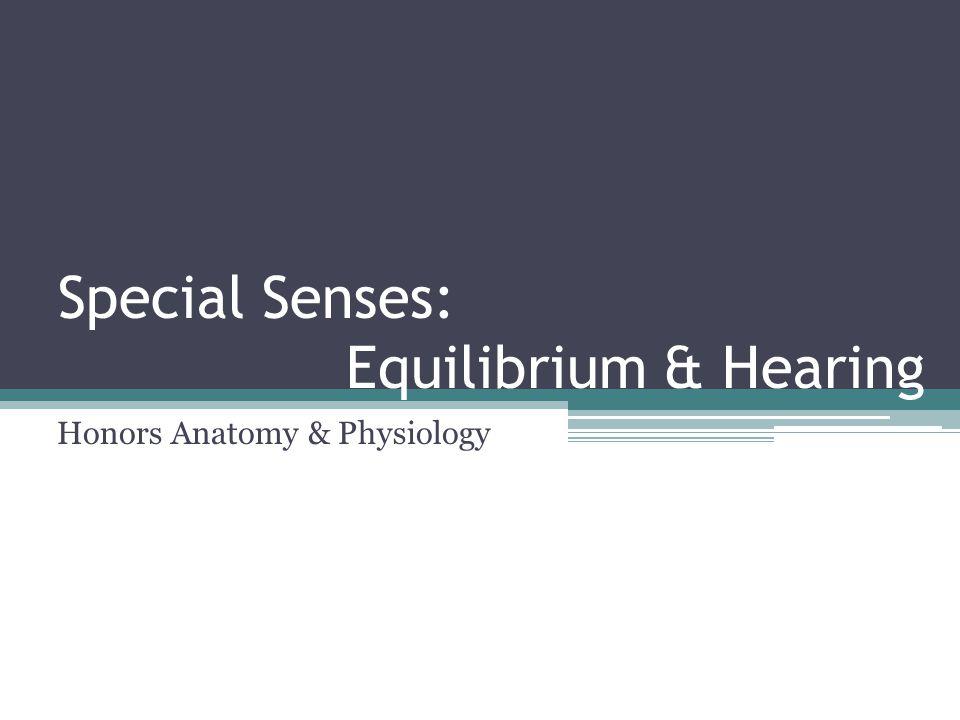 Special Senses: Equilibrium & Hearing