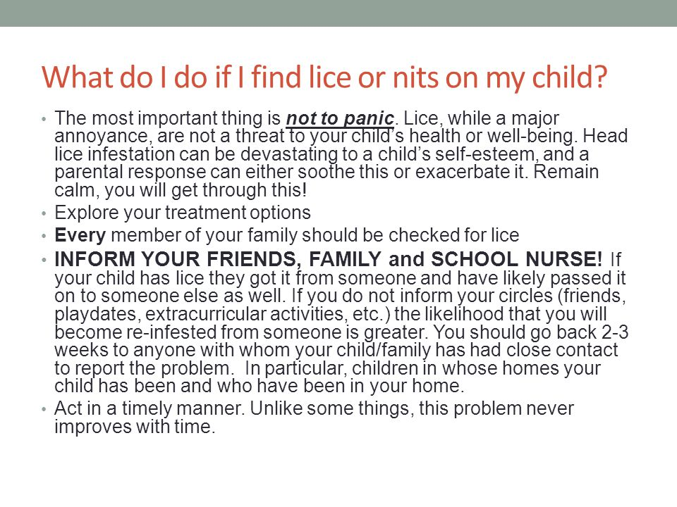 What do I do if I find lice or nits on my child