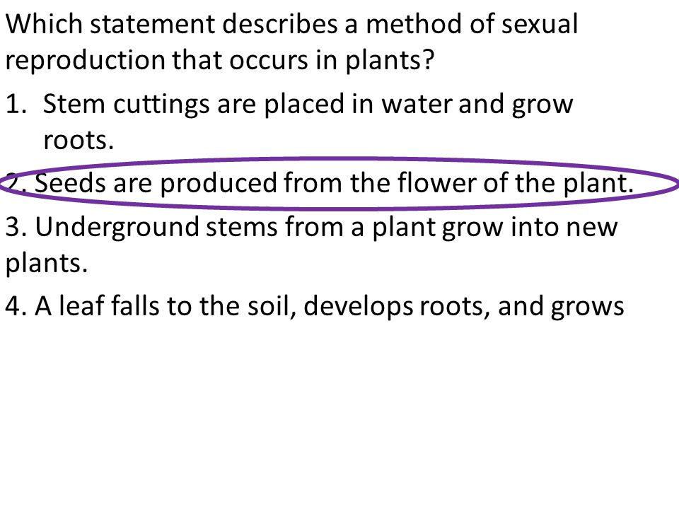 Which statement describes a method of sexual reproduction that occurs in plants