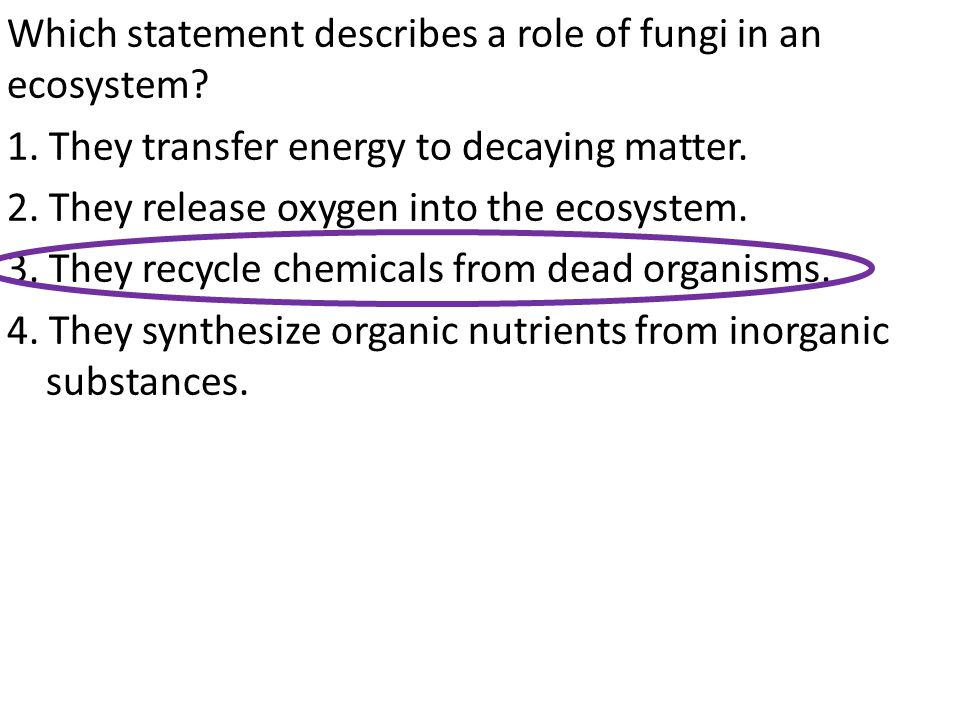 Which statement describes a role of fungi in an ecosystem. 1
