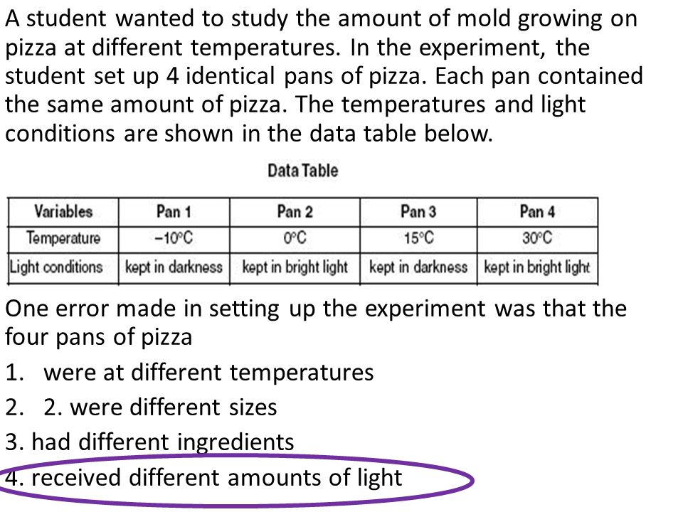 A student wanted to study the amount of mold growing on pizza at different temperatures. In the experiment, the student set up 4 identical pans of pizza. Each pan contained the same amount of pizza. The temperatures and light conditions are shown in the data table below.