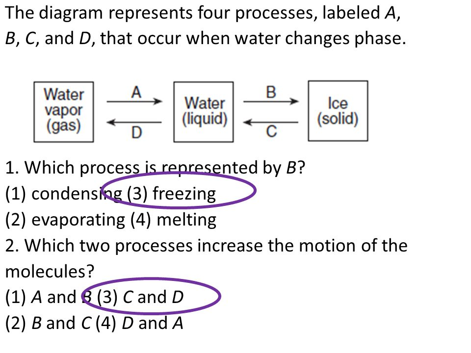 The diagram represents four processes, labeled A, B, C, and D, that occur when water changes phase.