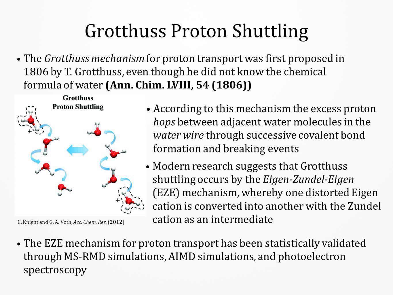 Grotthuss Proton Shuttling