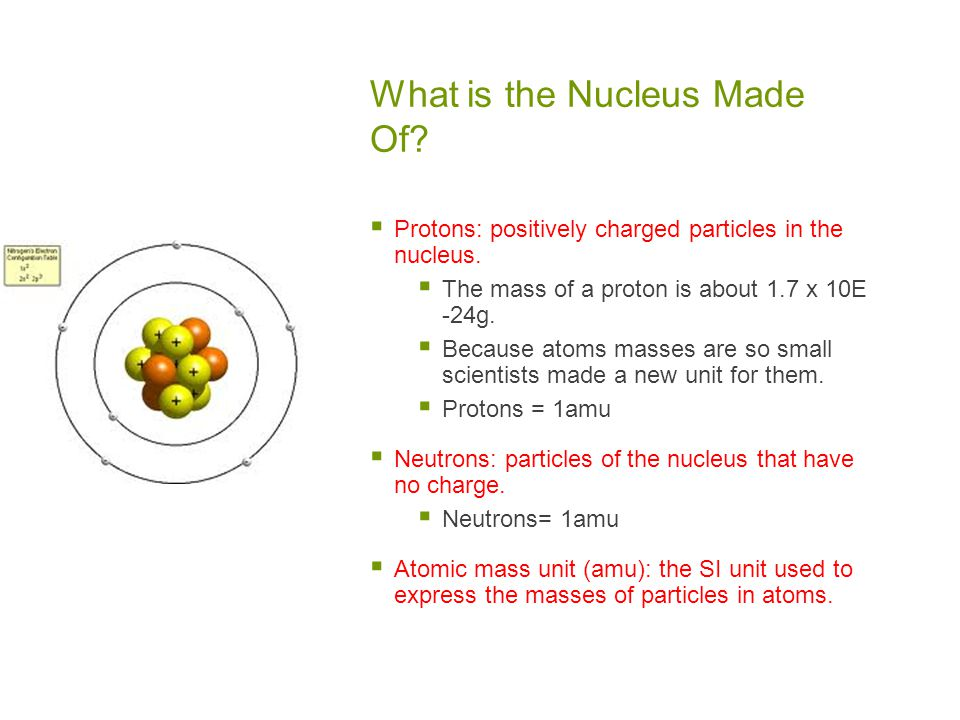 What is the Nucleus Made Of