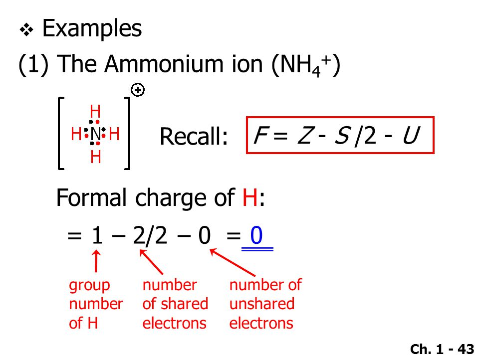 (1) The Ammonium ion (NH4+)