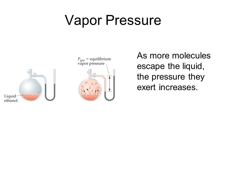 Vapor Pressure As more molecules escape the liquid, the pressure they exert increases.