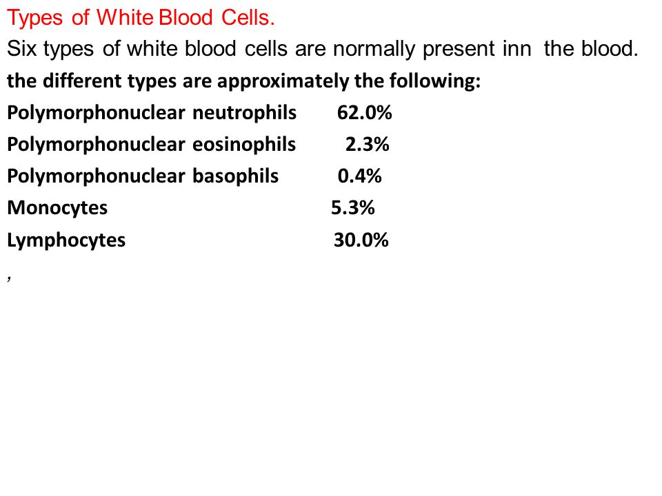 Types of White Blood Cells.
