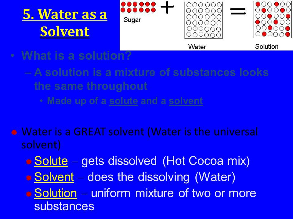 5. Water as a Solvent What is a solution