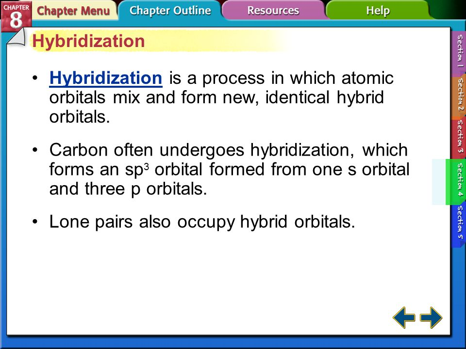 Lone pairs also occupy hybrid orbitals.