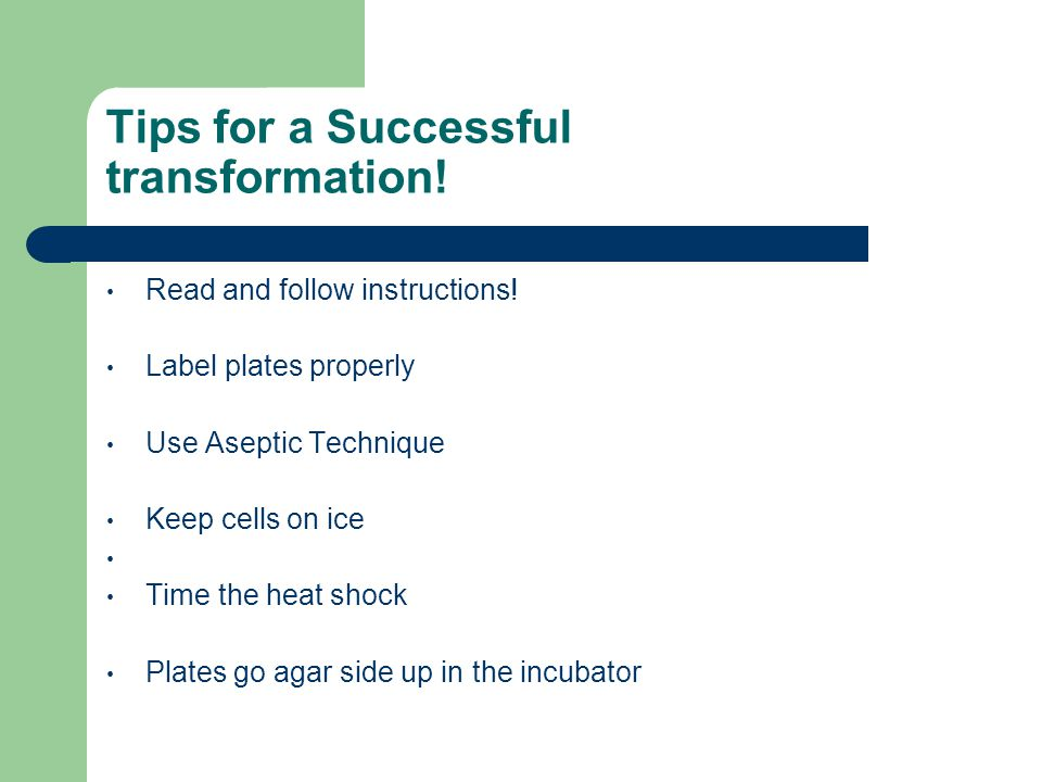 Tips for a Successful transformation!