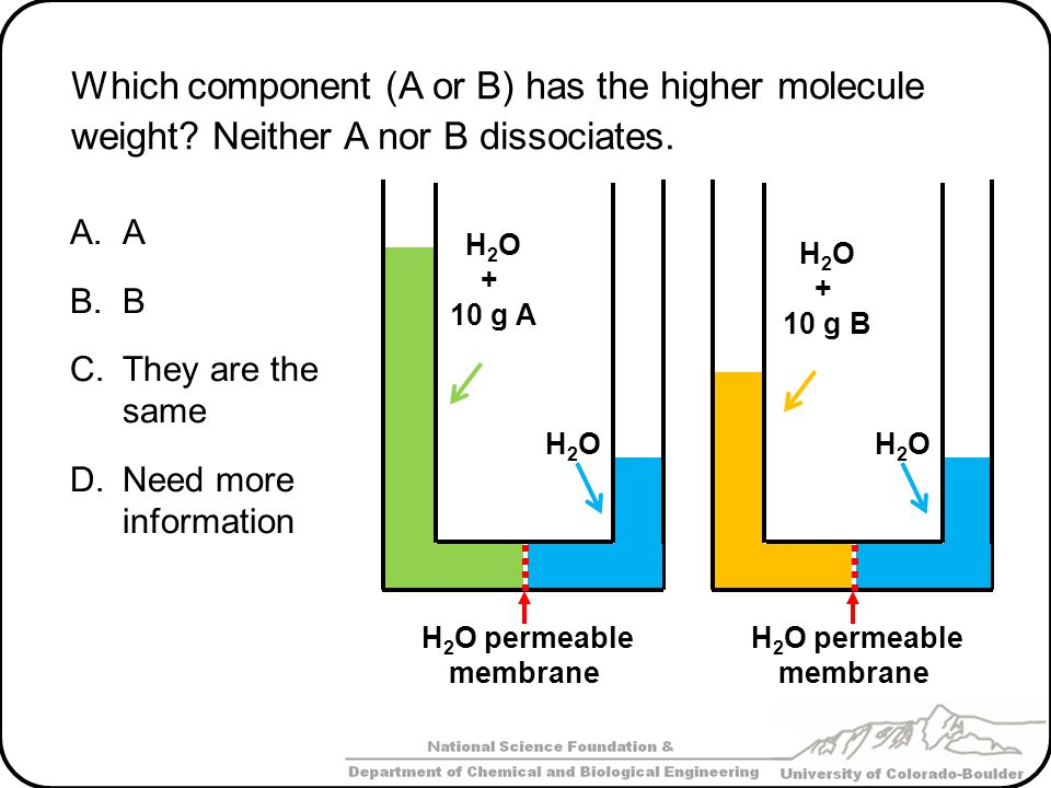 Which component (A or B) has the higher molecule weight