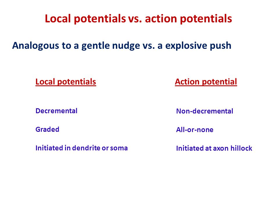Local potentials vs. action potentials