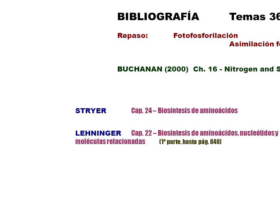 BIBLIOGRAFÍA Temas 36-37 Repaso: Fotofosforilación