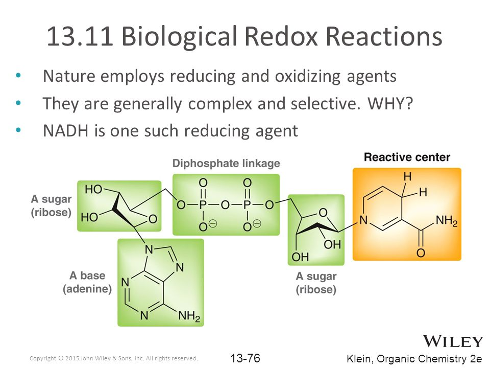 13.11 Biological Redox Reactions