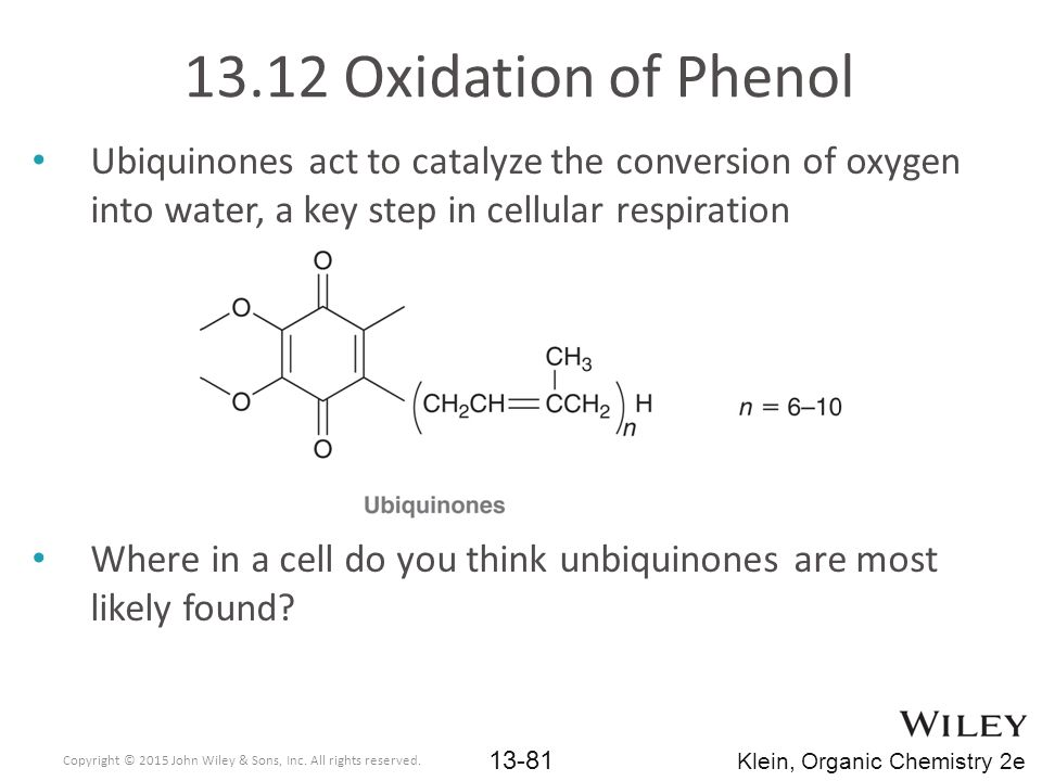 13.12 Oxidation of Phenol Ubiquinones act to catalyze the conversion of oxygen into water, a key step in cellular respiration.