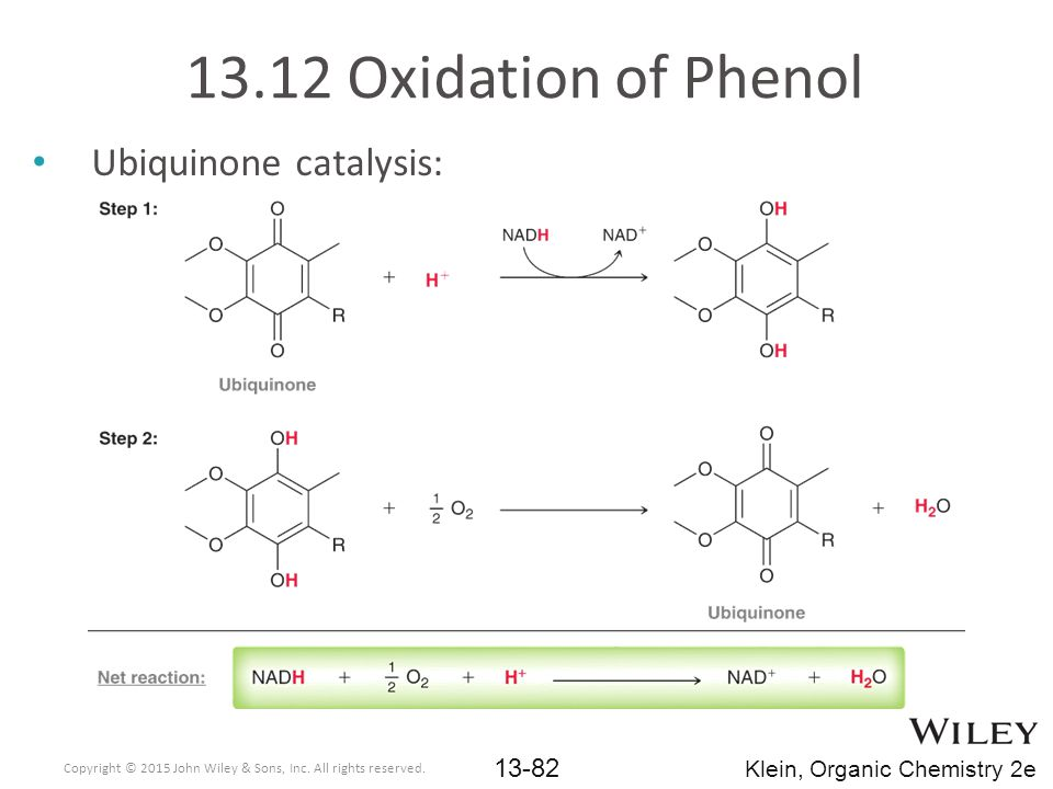 13.12 Oxidation of Phenol Ubiquinone catalysis: