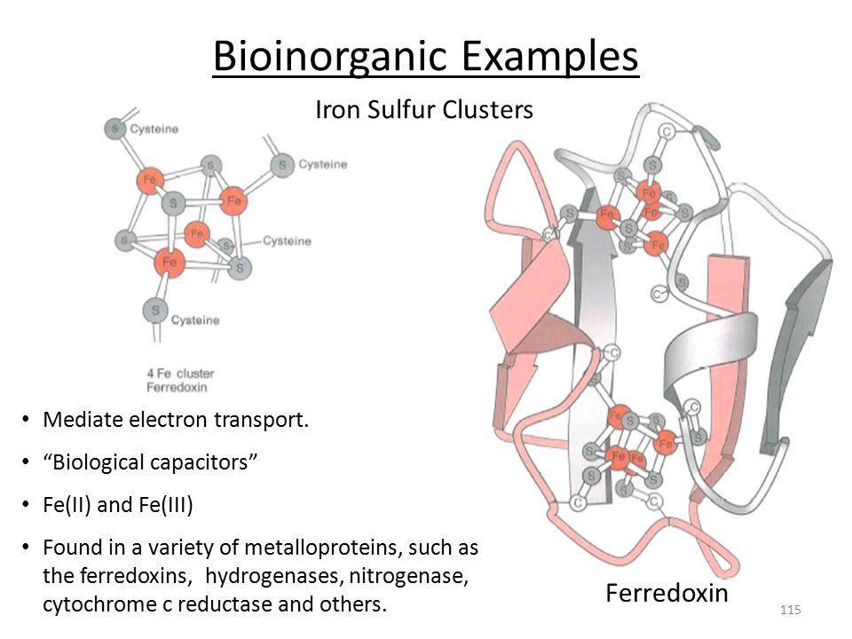 Bioinorganic Examples