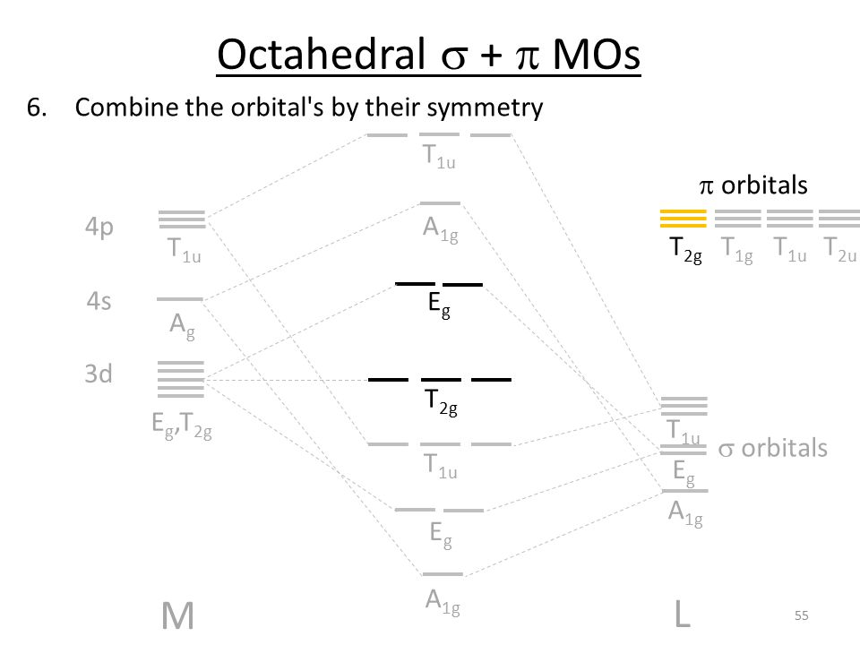 Octahedral s + p MOs M L Combine the orbital s by their symmetry T1u