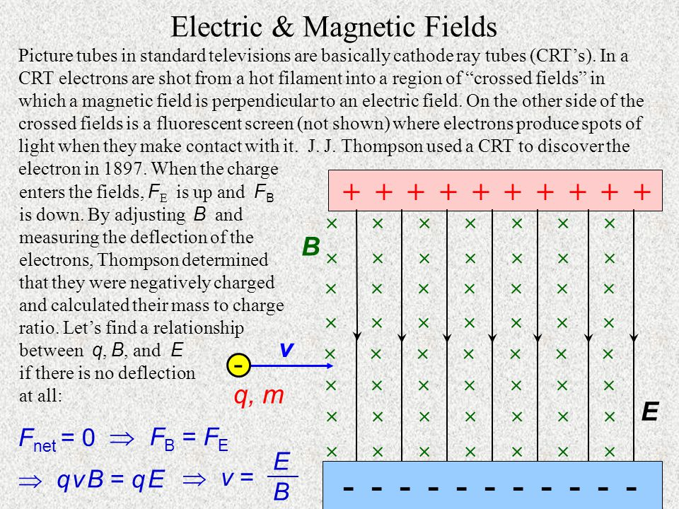 Electric & Magnetic Fields