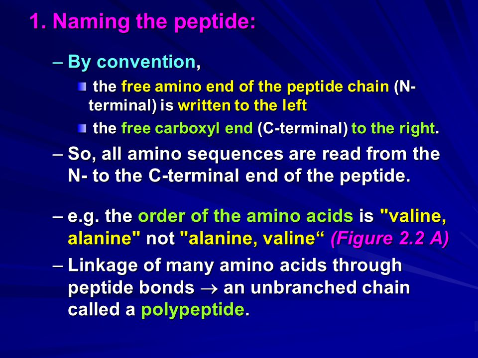 1. Naming the peptide: By convention,