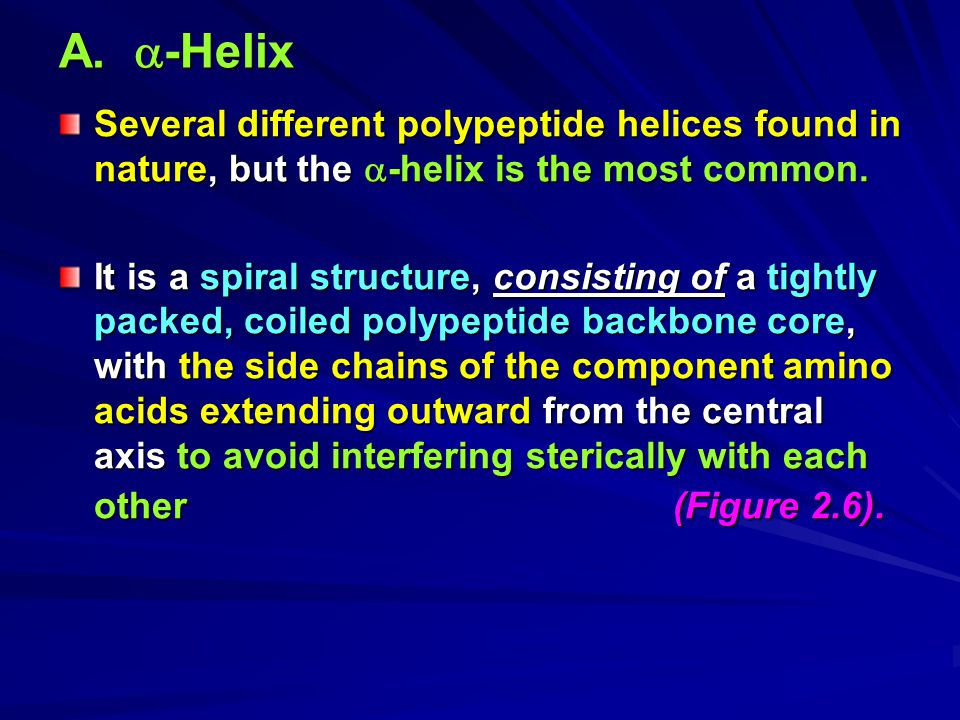 A. -Helix Several different polypeptide helices found in nature, but the -helix is the most common.