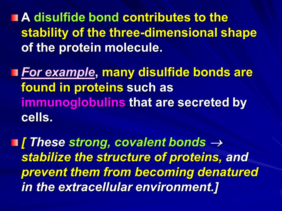 A disulfide bond contributes to the stability of the three-dimensional shape of the protein molecule.