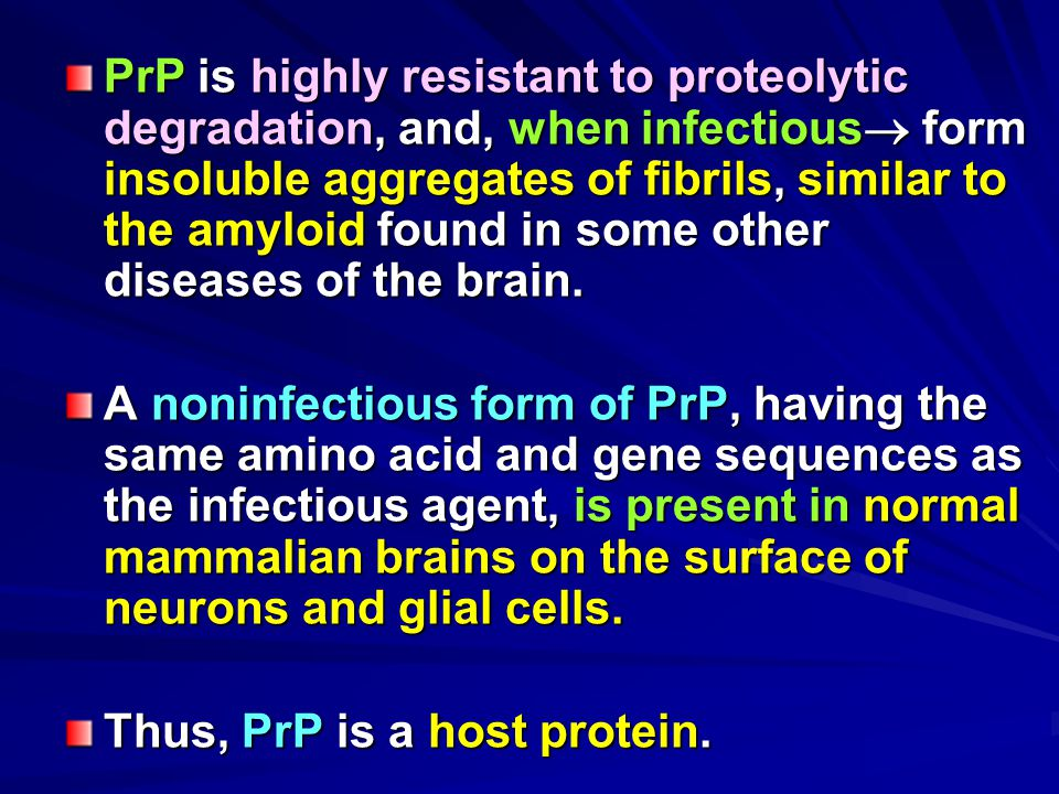 PrP is highly resistant to proteolytic degradation, and, when infectious form insoluble aggregates of fibrils, similar to the amyloid found in some other diseases of the brain.