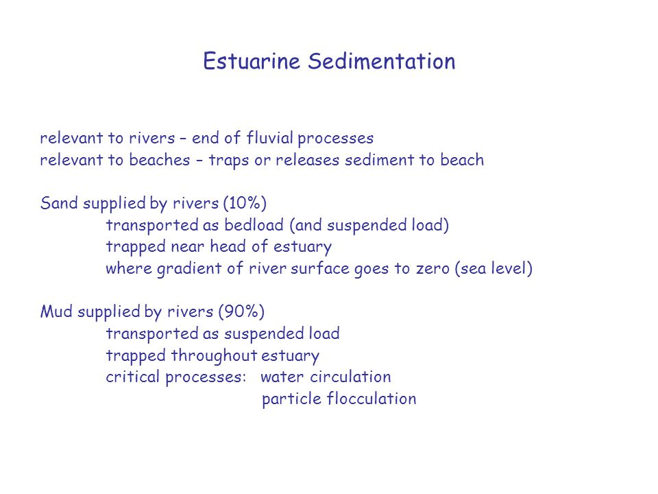 Estuarine Sedimentation